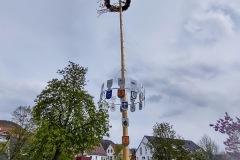 Maibaum Eningen 2021