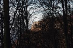 Wackerstein 15.11.2020